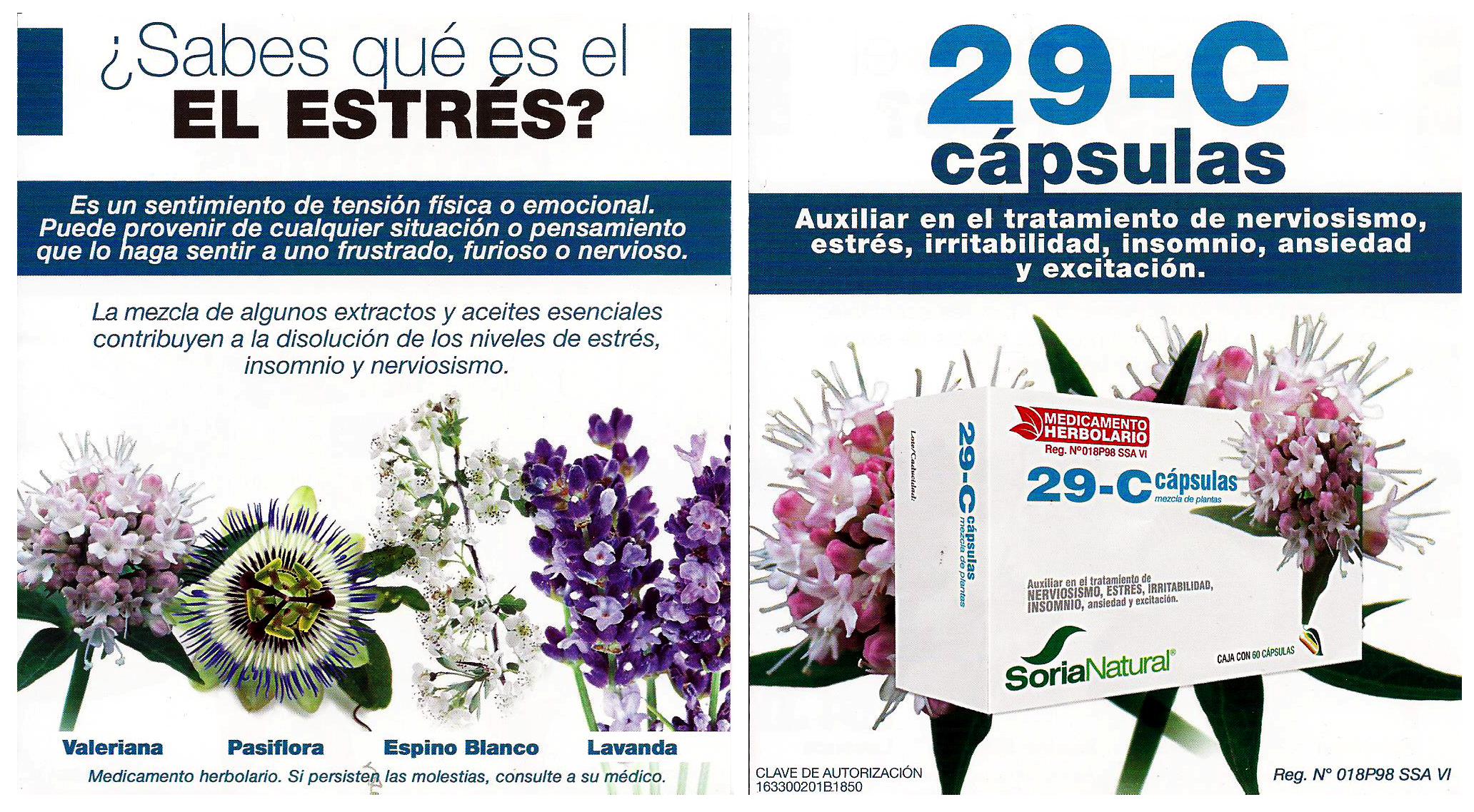 flyers-impresos-guadalupana-1-dic-160001y2