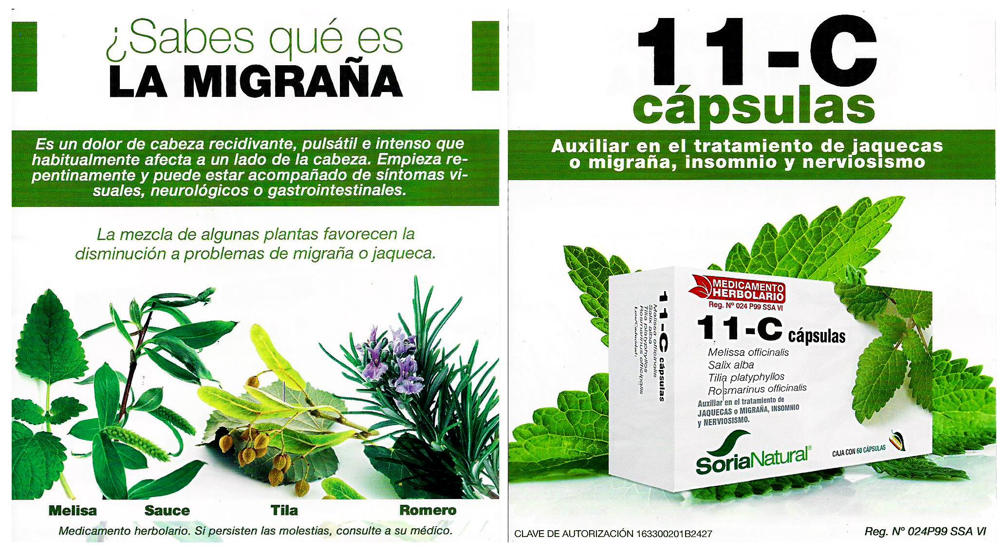 flyers-impresos-guadalupana-1-dic-160003y4